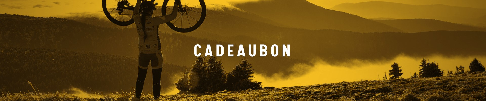 Cadeaubon bikefit of trainingsbegeleiding wolf performance
