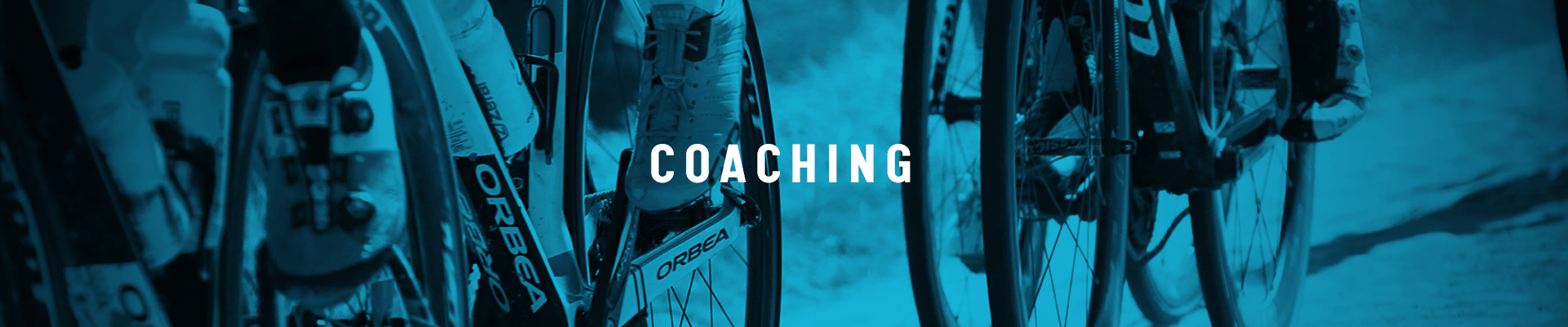 sportprestaties optimaliseren voor training en coaching van Wolf experten